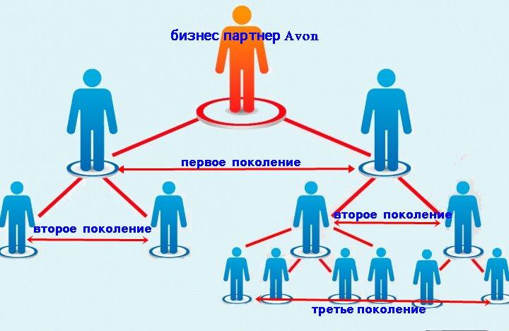 структура поколений парнера эйвон